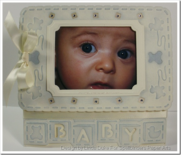 1209 LD Card Baby Frame for Blog Frenzy - Video