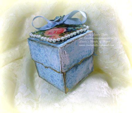 7-25-11 Blue flower box 4