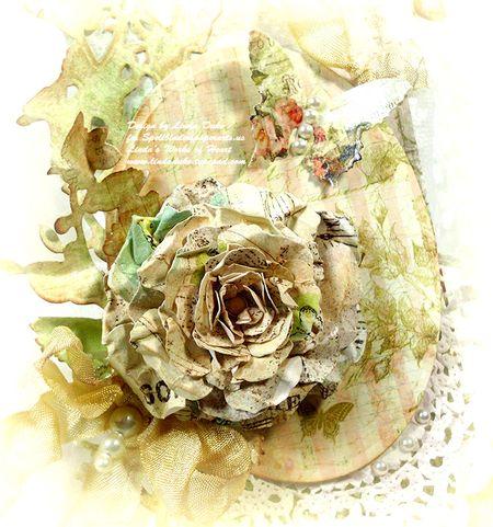 7-27-11 Donna's flower 2