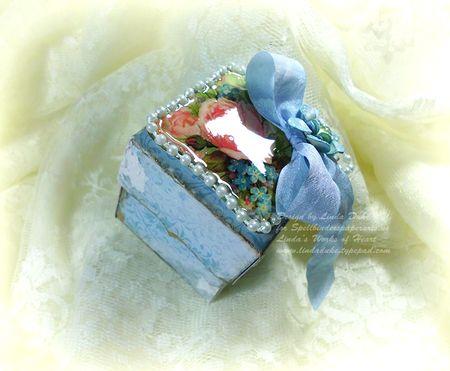 7-25-11 Blue flower box 3