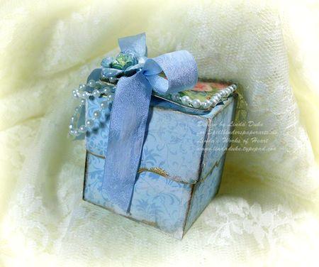 7-25-11 Blue flower box 5
