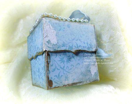 7-25-11 Blue flower box 6