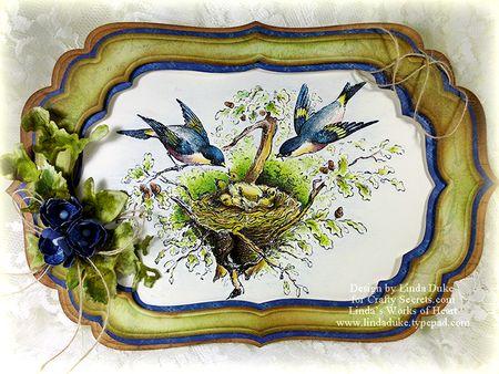 11-24-11 birds w wm