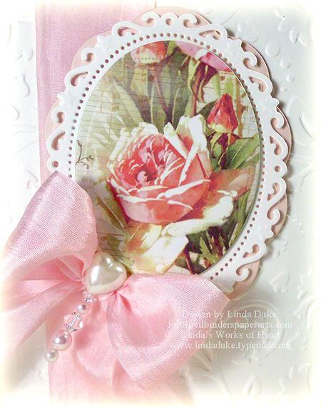 2-23-12 Pink Rose 2
