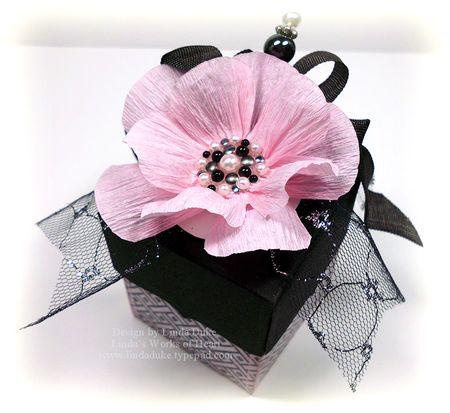 4-28-12 Pink & Black Box 3