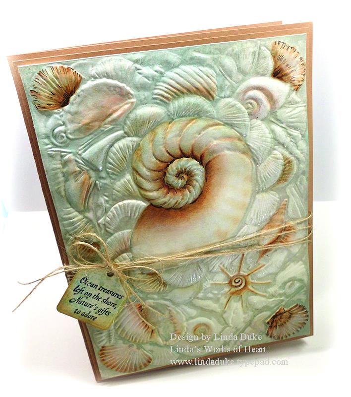 1-28-13 Seashells 1