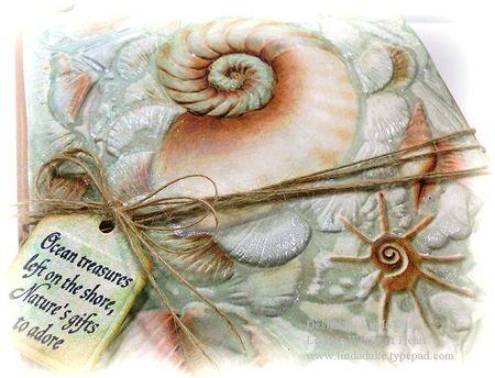 1-28-13 Seashells