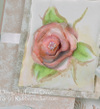Dream_shabby_chic_close_up_rubberne