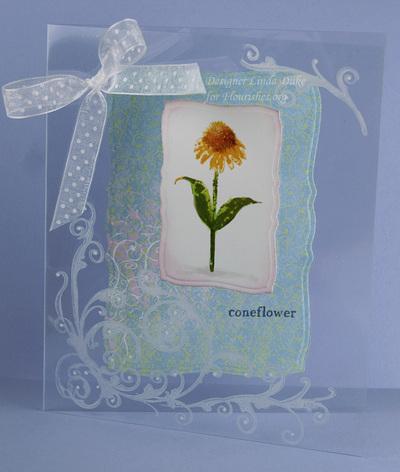 Cornflower_81208