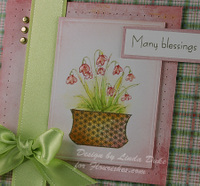 Many_blessings_91008_release_close_
